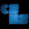 CSTA: National Computer Science Honor Society Logo
