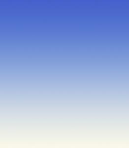 BPCnet Gradient Logo